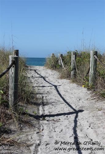 beach03-12-12.jpg