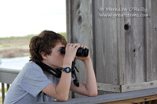 binoculars03-16-12.jpg