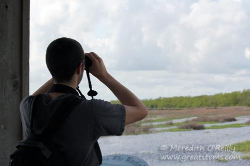 binocularsa03-16-12.jpg
