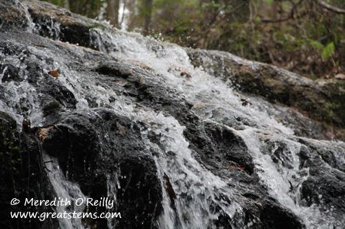 fallingwatersb03-11-12.jpg
