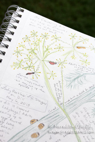 MEOnaturejournal05-16-13