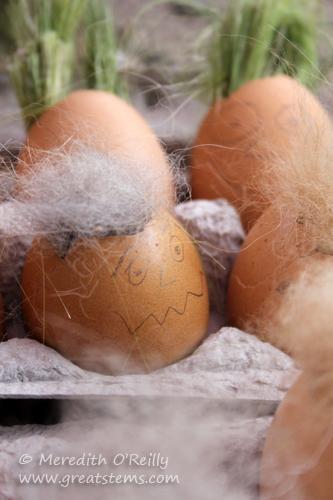 eggnestingmatsC05-06-13