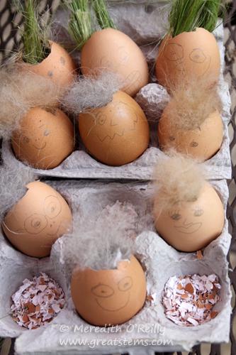 eggnestingmatsD05-06-13