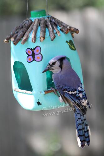 Wildlife Projects For Kids Milk Jug Bird Feeders