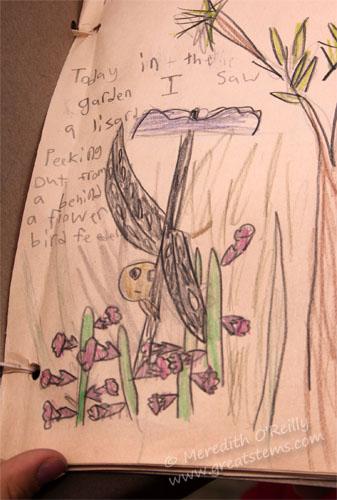 naturejournalE05-06-13