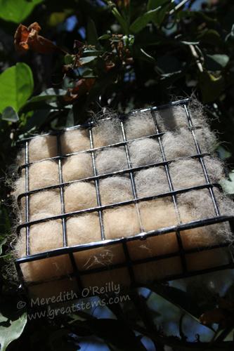 nestingmaterialsB05-06-13