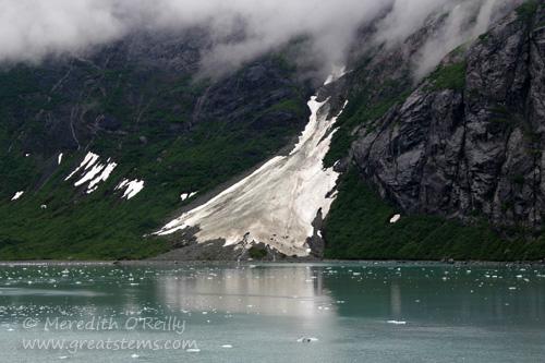 glacierbayc07-02-13