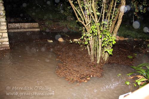 flood10-30-13
