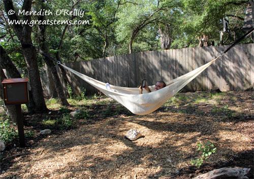 hammock06-25-12.jpg