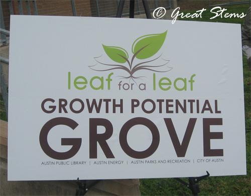 leafforaleaf02-20-10.jpg