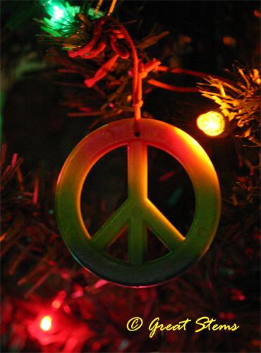 peace12-23-10.jpg