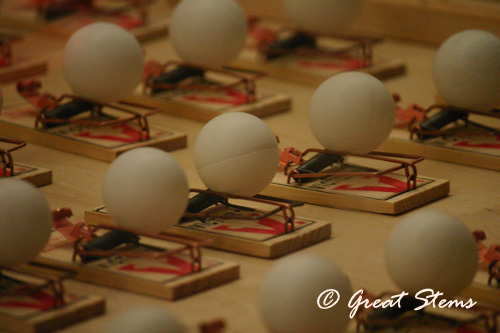 pingpong03-07-11.jpg