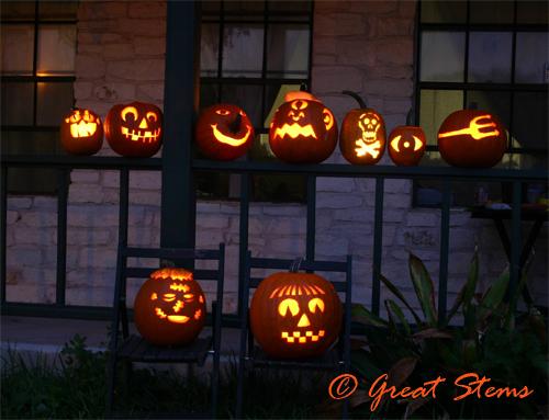 pumpkinsb2009.jpg