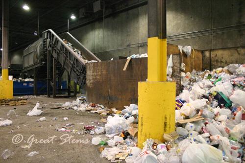 recyclingq01-24-11.jpg