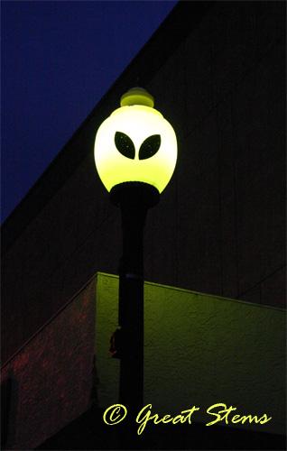 roswelllamp07-10.jpg