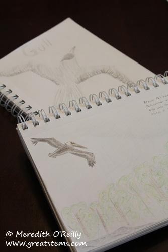 sketchesb03-11-12.jpg