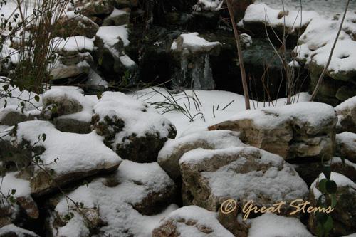 snowd02-04-11.jpg