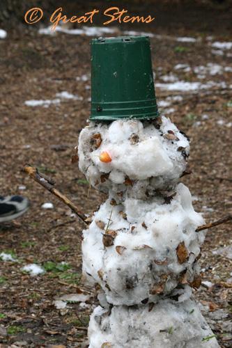 snowmanb02-23-10.jpg