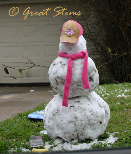 snowmanc02-23-10.jpg