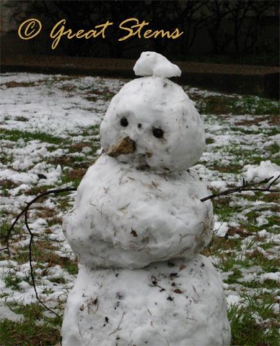 snowmand02-23-10.jpg