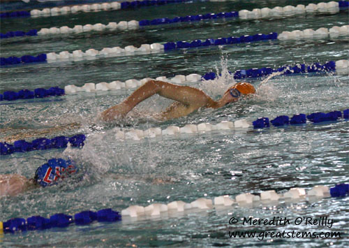 swimmeet11-17-11.jpg
