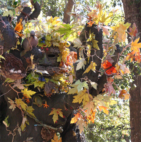 treeman10-31-10.jpg