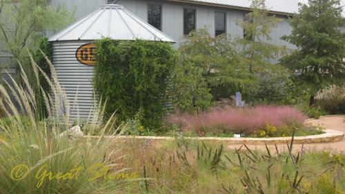 wildflowerorgd10-09-09.jpg