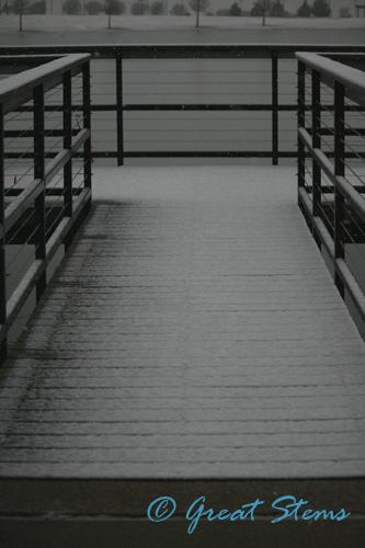winterc12-29-09.jpg