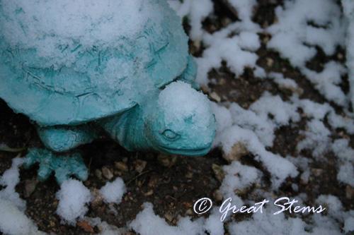 winterj12-29-09.jpg